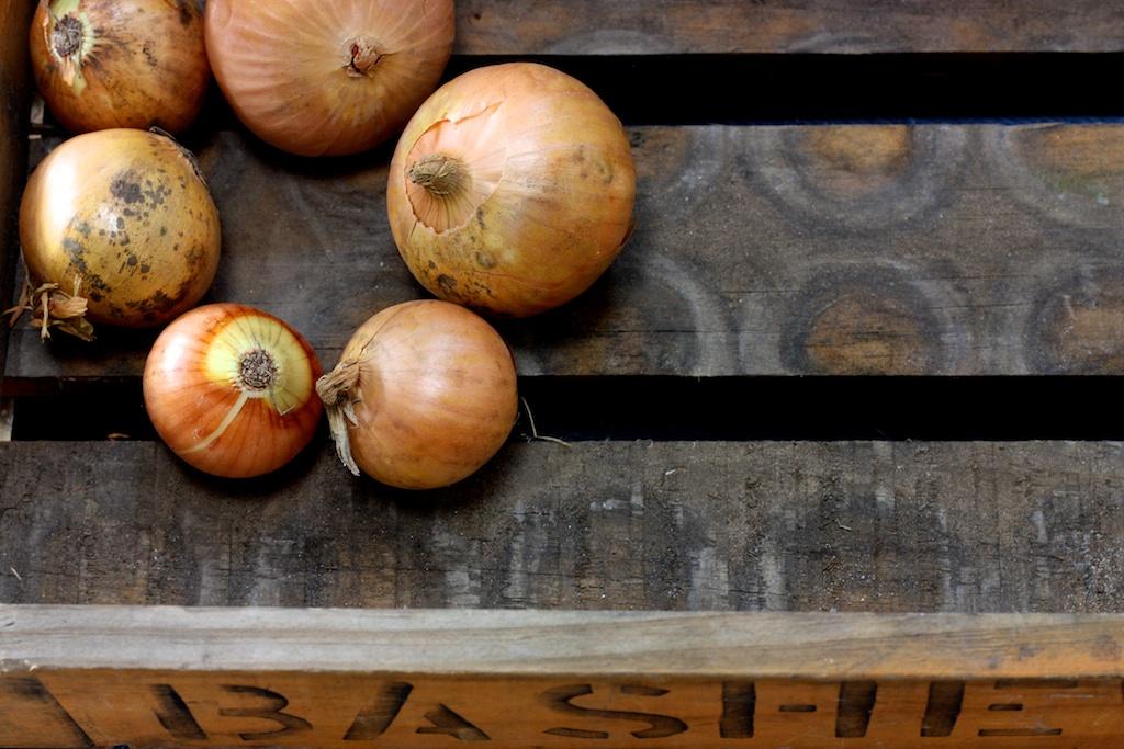 Onion Marmelade1