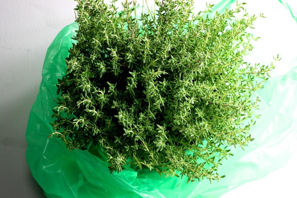 Wolfsbarsch- Kartoffeln- Kapern- Oliven- Thymian2